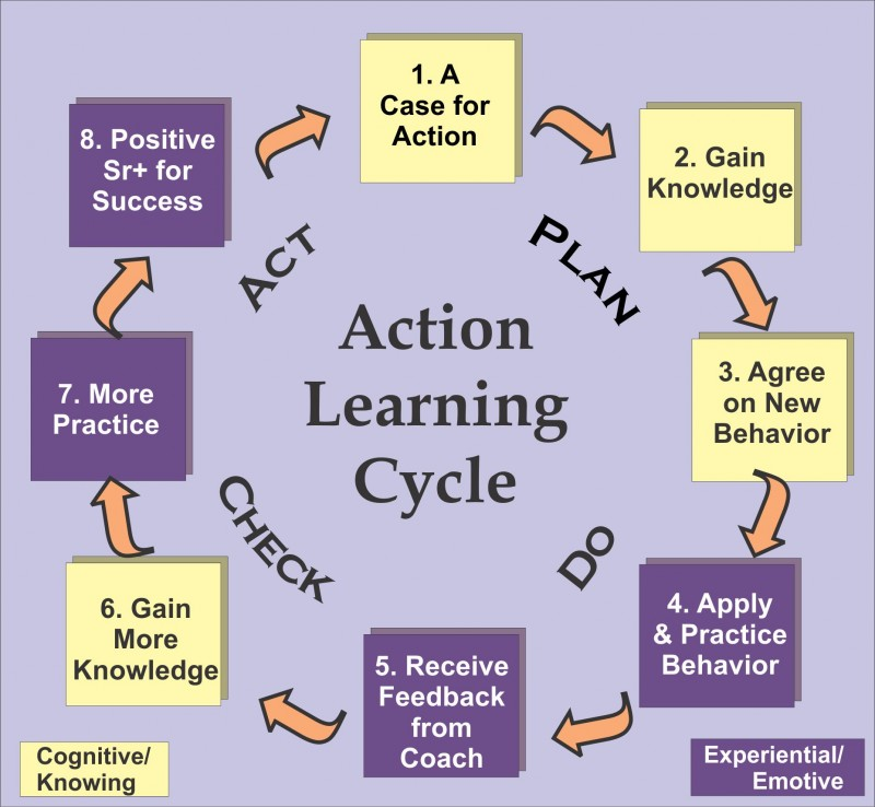 the success of learning organisations is