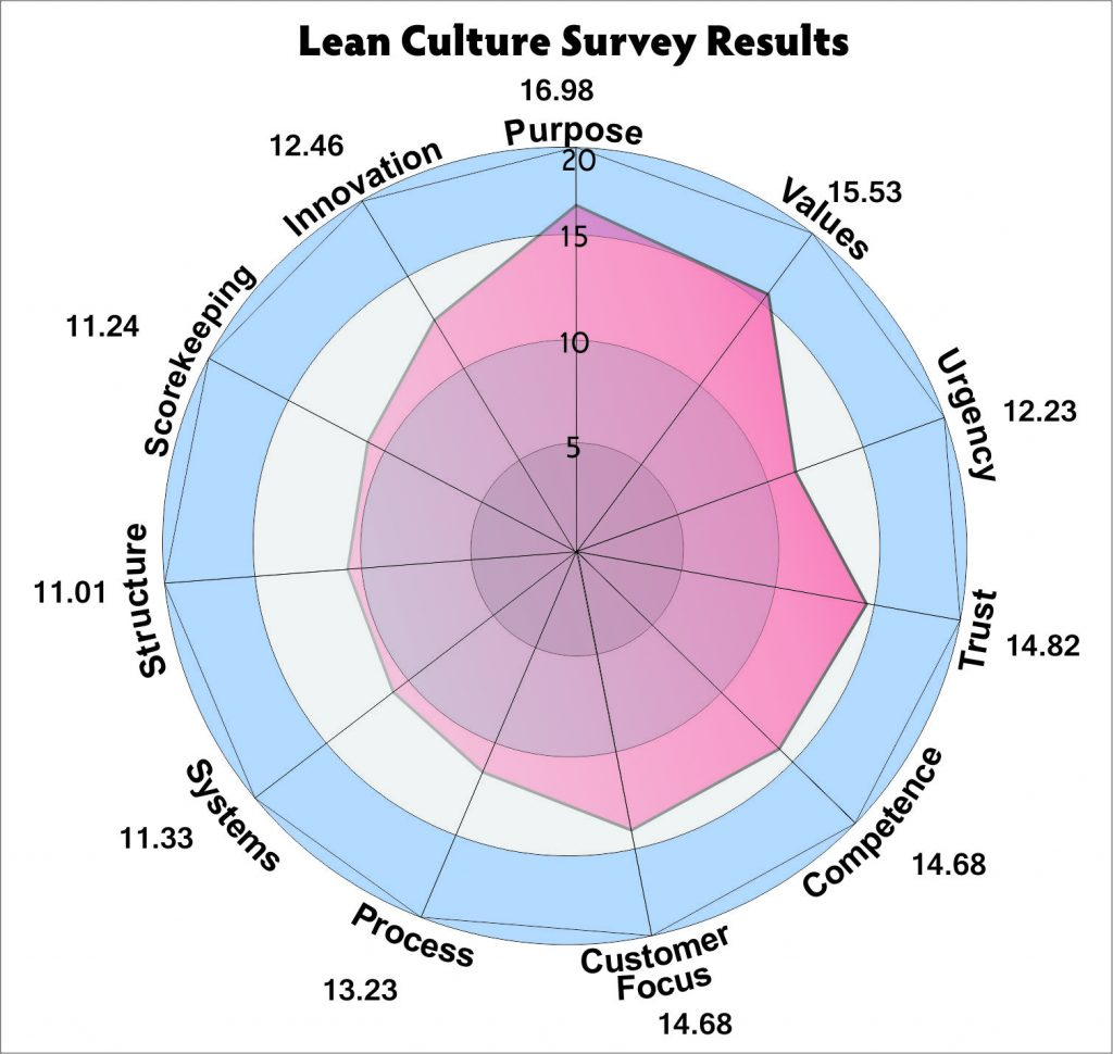 Lean Culture Survey Results