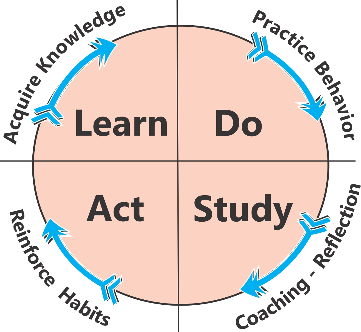 How to Build Lean Systems of Organizational Learning
