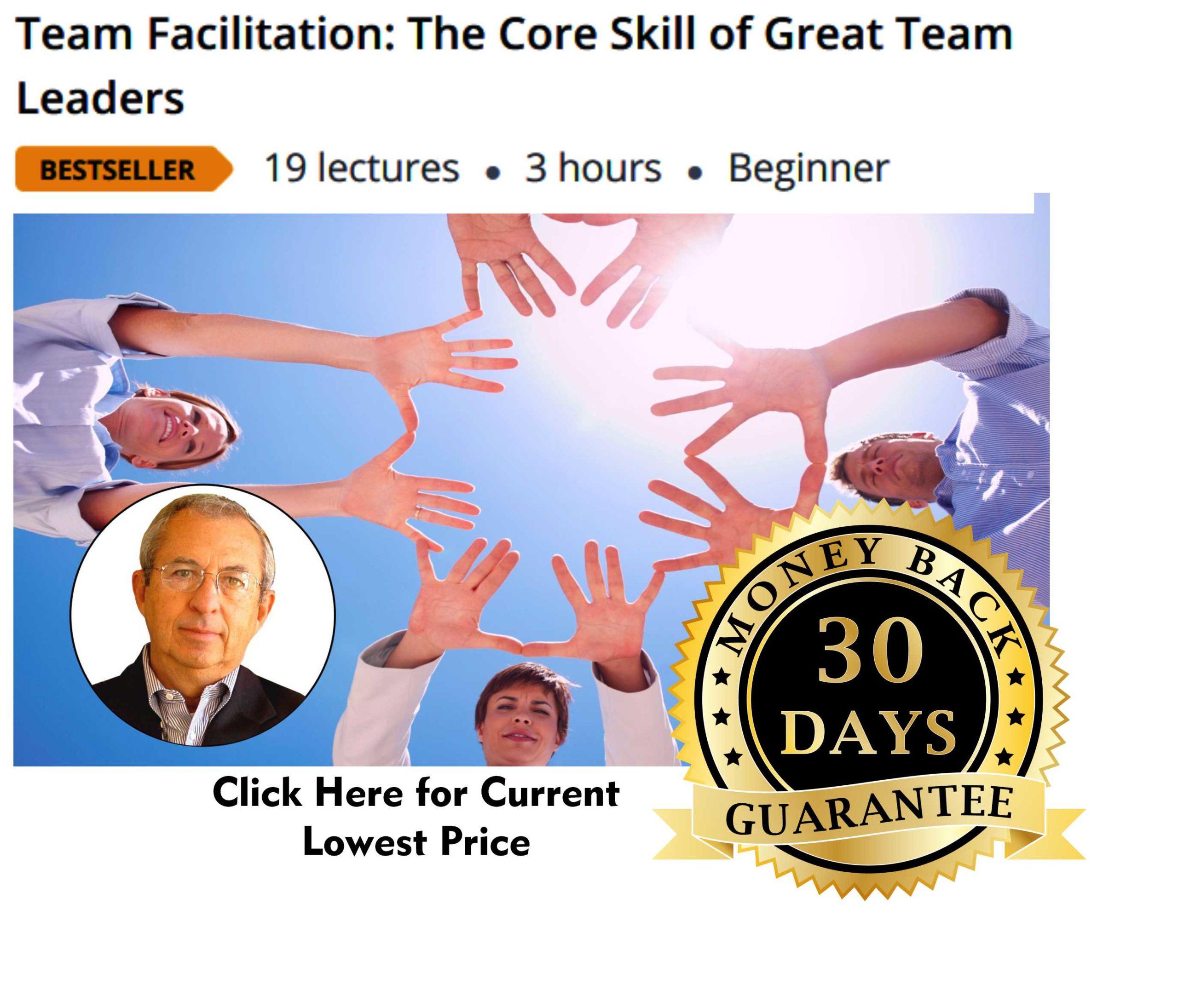 Team Facilitation Skills